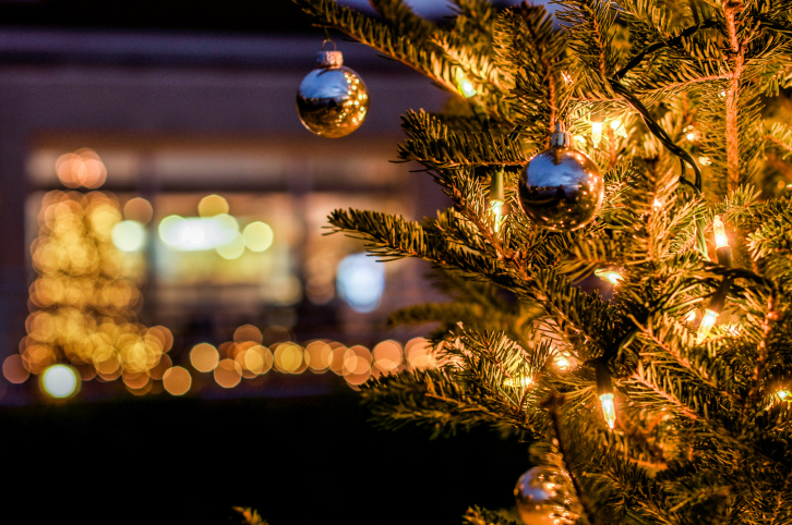 How To Hang Christmas Lights On Outdoor Trees
