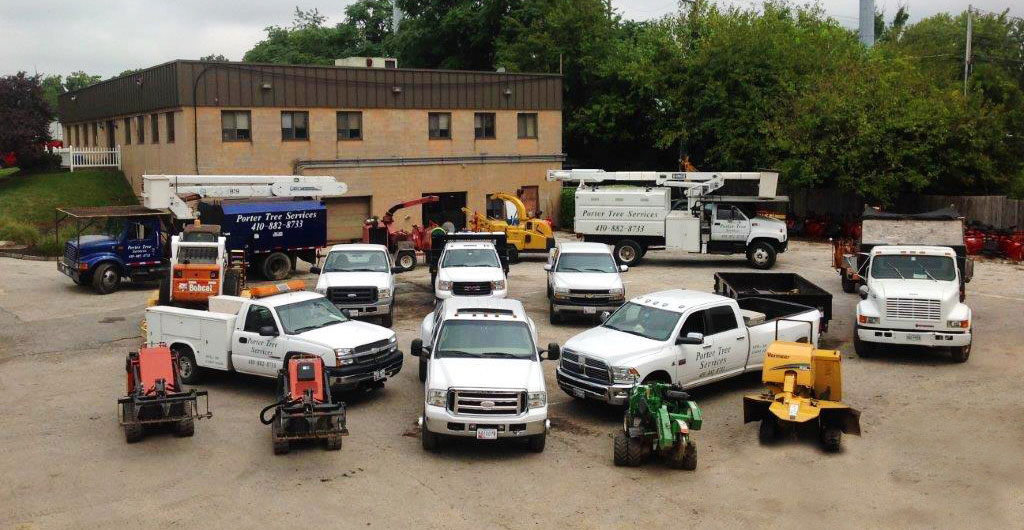Porter Tree Services in Baltimore, Maryland